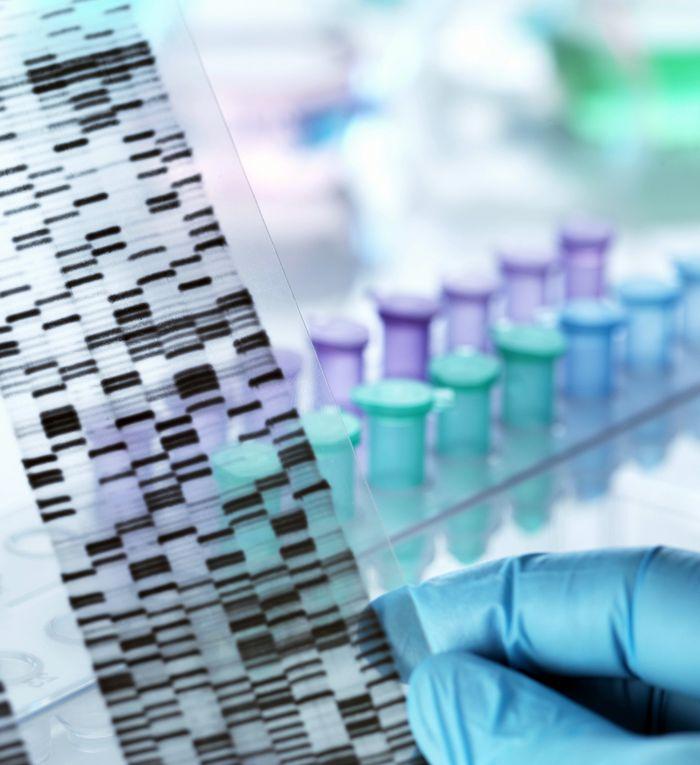 Исковое заявление об установлении отцовства через ДНК тест