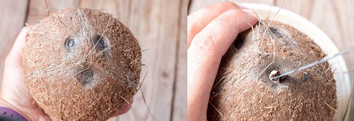 Как сделать отверстие в кокосе