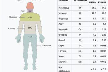 Химический состав человека