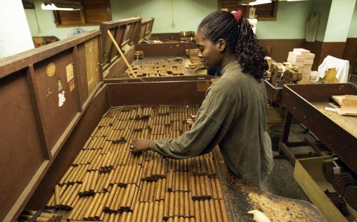 Кубинка сортирует сигары