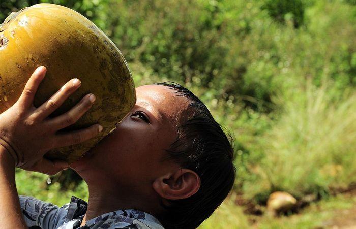 Ребенок пьет кокосовую воду прямо из кокоса