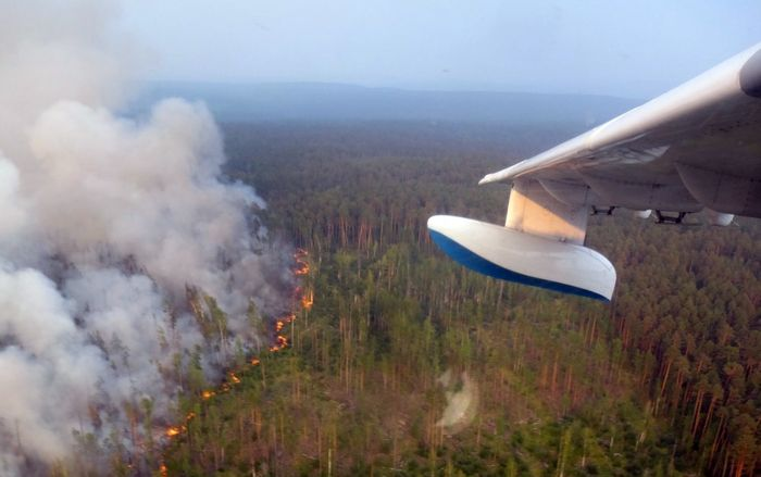 Тушение лесных пожаров в Сибири